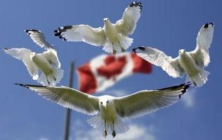 Health Canada Announces GHS Alignment