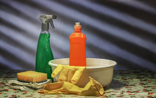 New York Household Cleansing Product Information Disclosure Program